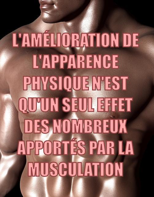 Les nombreux bienfaits de la musculation