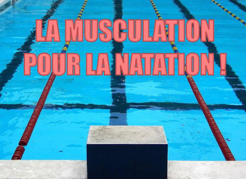 Fabuleux La musculation pour la natation NR63